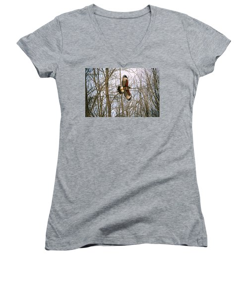 In Flight Women's V-Neck T-Shirt (Junior Cut) by David Porteus