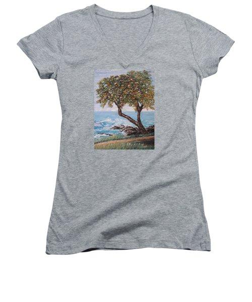 In Hawaii Women's V-Neck T-Shirt (Junior Cut) by Roberta Rotunda