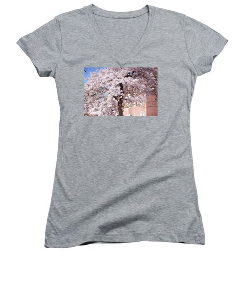 In Its Glory. Pink Spring In Amsterdam Women's V-Neck