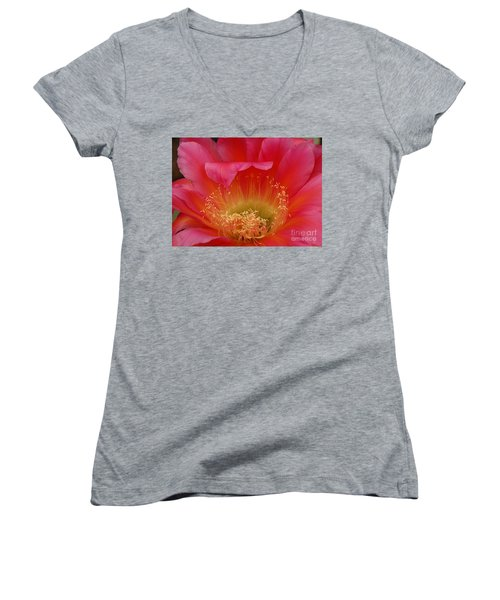 In The Pink Women's V-Neck T-Shirt (Junior Cut) by Vivian Christopher