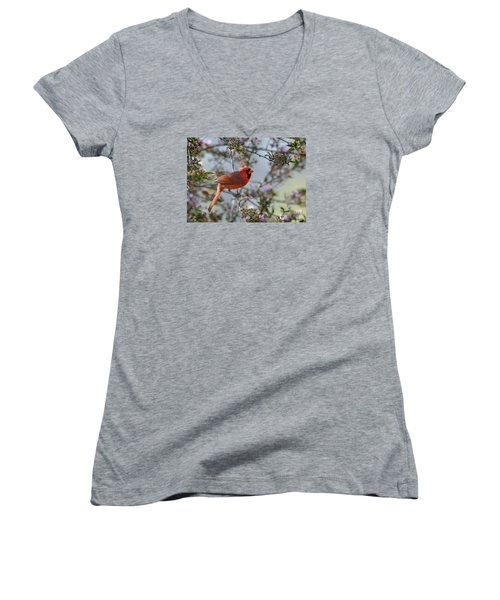 In The Spring Women's V-Neck T-Shirt