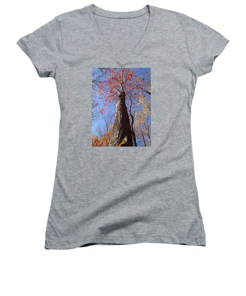 In The Woods 1 Women's V-Neck (Athletic Fit)