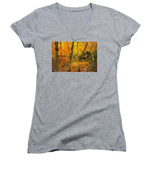 In The Woods Women's V-Neck T-Shirt (Junior Cut) by Bill Howard