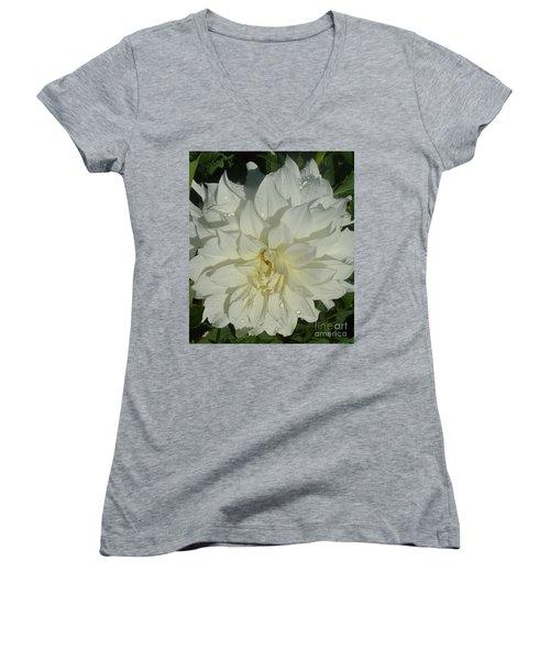 Innocent White Dahlia  Women's V-Neck T-Shirt (Junior Cut) by Susan Garren