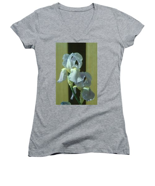 Iris 2 Women's V-Neck T-Shirt