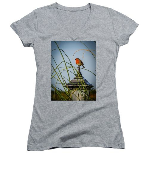 Irish Robin Perched On Garden Lamp Women's V-Neck