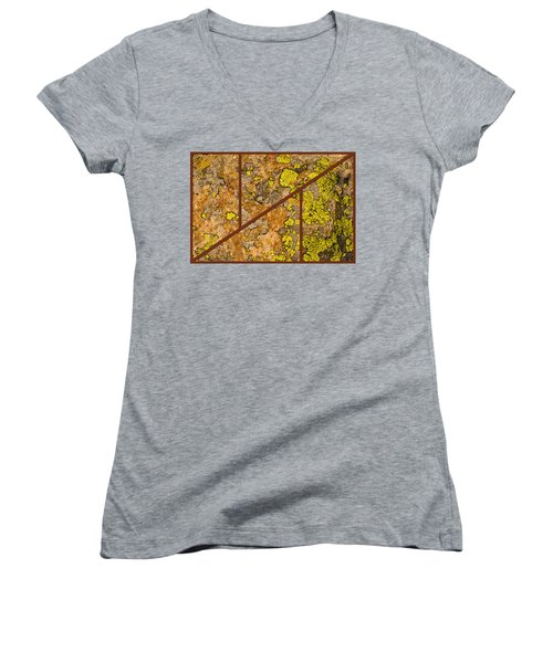 Iron And Lichen Women's V-Neck T-Shirt