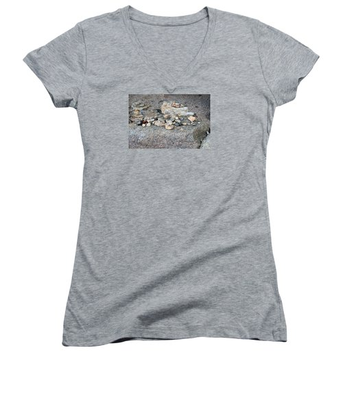 Women's V-Neck T-Shirt (Junior Cut) featuring the photograph Ishi by Cassandra Buckley