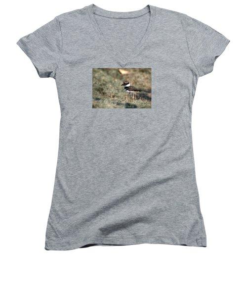 Its A Killdeer Babe Women's V-Neck T-Shirt (Junior Cut) by Skip Willits