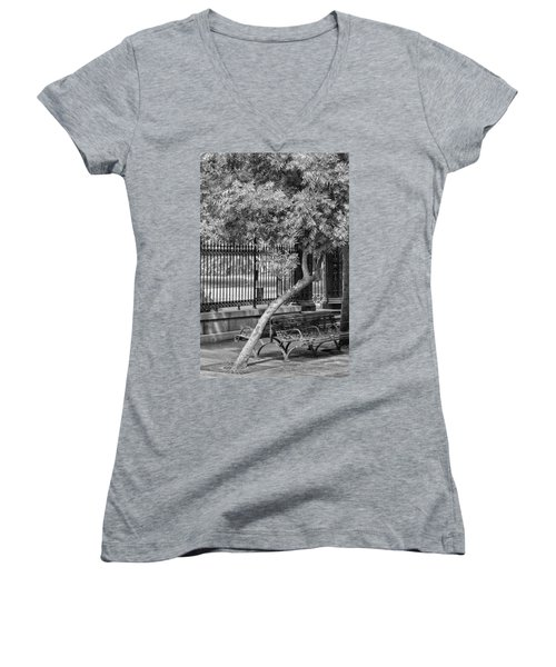 Jackson Square Bench And Tree Women's V-Neck (Athletic Fit)