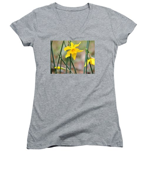 Women's V-Neck T-Shirt (Junior Cut) featuring the photograph Johnny-jump-up by Kim Pate