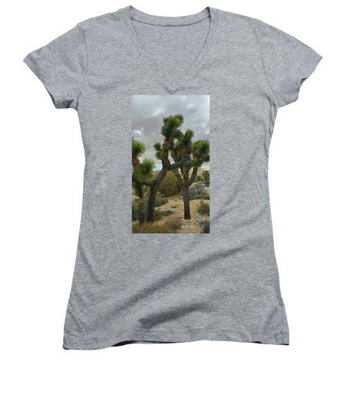 Joshua Cloudz Women's V-Neck T-Shirt (Junior Cut) by Angela J Wright