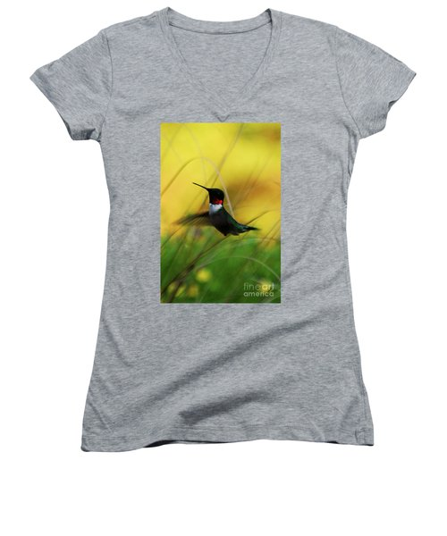 Just Flying Women's V-Neck T-Shirt (Junior Cut)