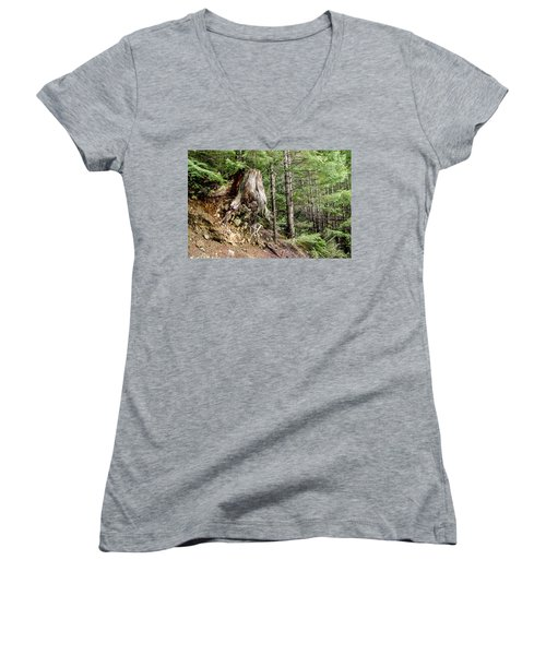 Just Hanging On Old Growth Forest Stump Women's V-Neck T-Shirt (Junior Cut) by Roxy Hurtubise