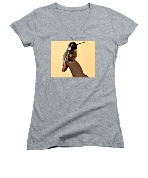 Women's V-Neck T-Shirt (Junior Cut) featuring the photograph Juvenile Rufus Hummingbird Sitting It Out by Jay Milo