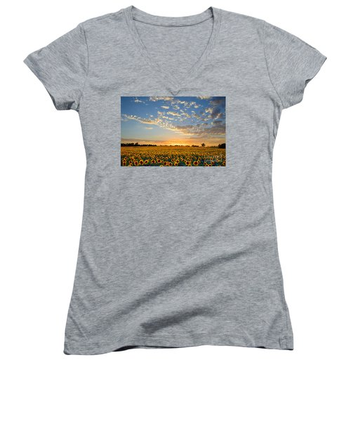 Kansas Sunflowers At Sunset Women's V-Neck T-Shirt (Junior Cut) by Catherine Sherman