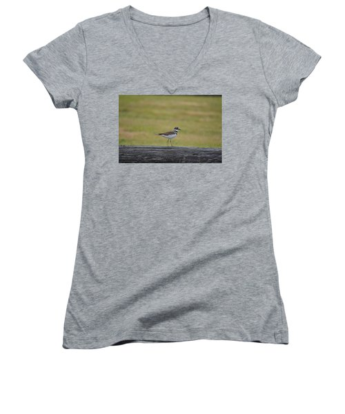 Killdeer Women's V-Neck T-Shirt