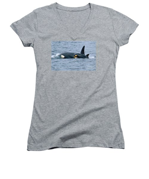 Women's V-Neck T-Shirt (Junior Cut) featuring the photograph Killer Whale Mother And New Born Calf Orcas In Monterey Bay 2013 by California Views Mr Pat Hathaway Archives
