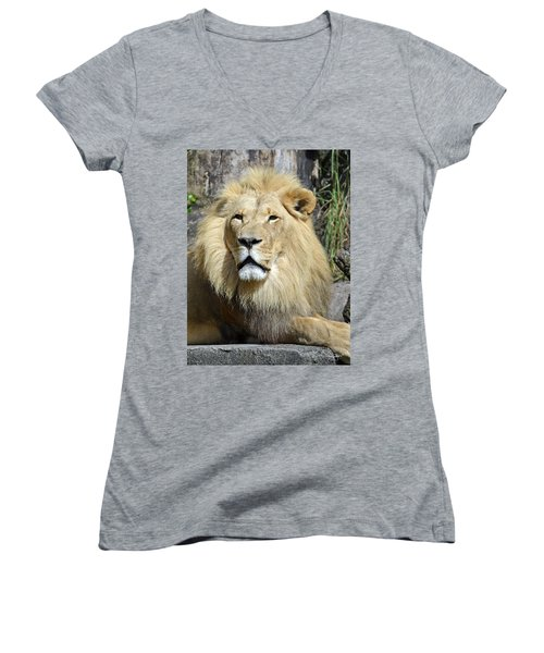 King Of Beasts Women's V-Neck (Athletic Fit)
