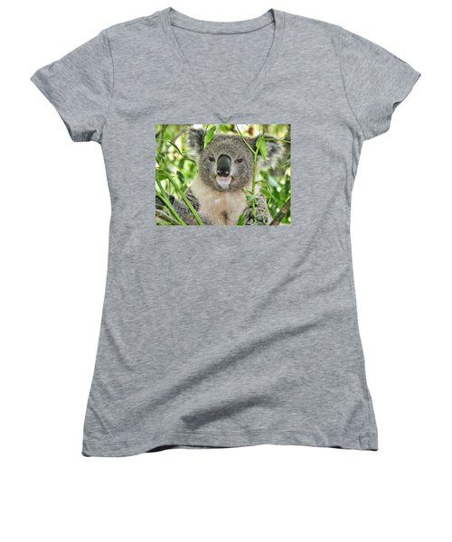 Koala Bear Women's V-Neck T-Shirt