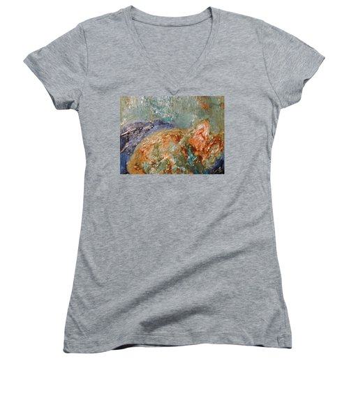 Lady The Cat Sleeping Soundly And Peacefully Women's V-Neck