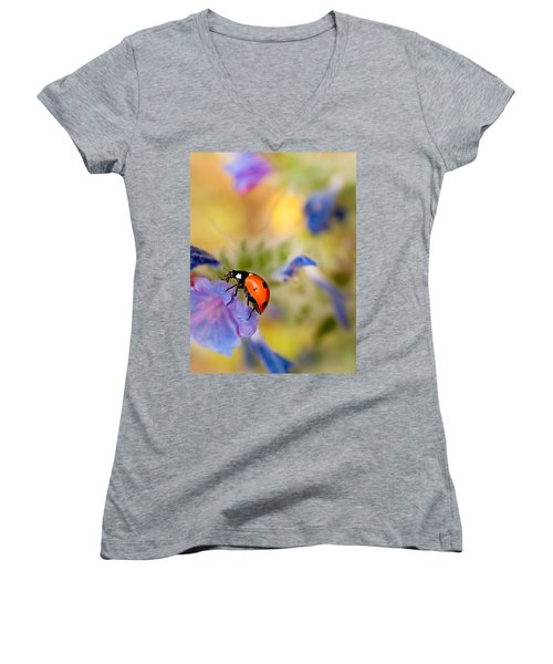 Ladybird Women's V-Neck T-Shirt (Junior Cut) by Meir Ezrachi