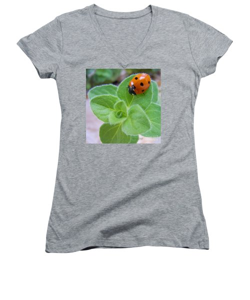 Women's V-Neck T-Shirt (Junior Cut) featuring the photograph Ladybug And Oregano by Robert ONeil