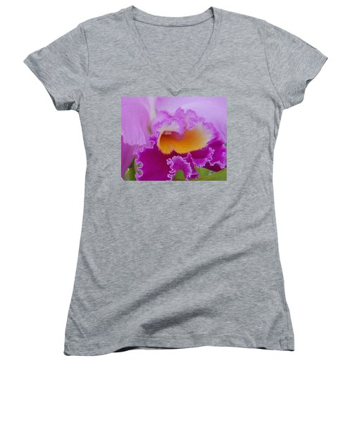 Women's V-Neck T-Shirt (Junior Cut) featuring the photograph Lavender Orchid by Aimee L Maher Photography and Art Visit ALMGallerydotcom