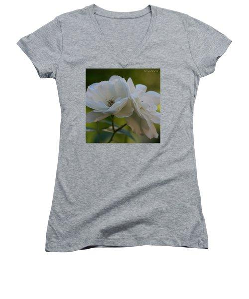 Lean On Me White Roses In Anna's Gardens Women's V-Neck T-Shirt