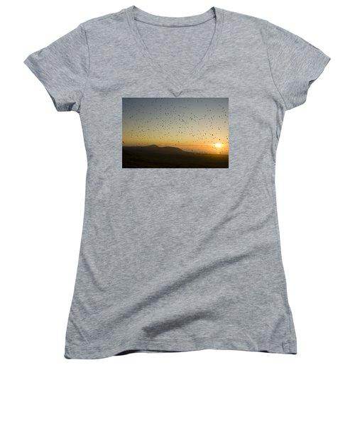 Least Auklets, Returning To Their Nest Women's V-Neck T-Shirt (Junior Cut) by Brian Guzzetti