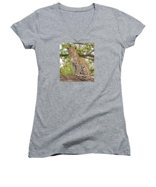 Leopard Cub Gaze Women's V-Neck T-Shirt (Junior Cut) by Tom Wurl