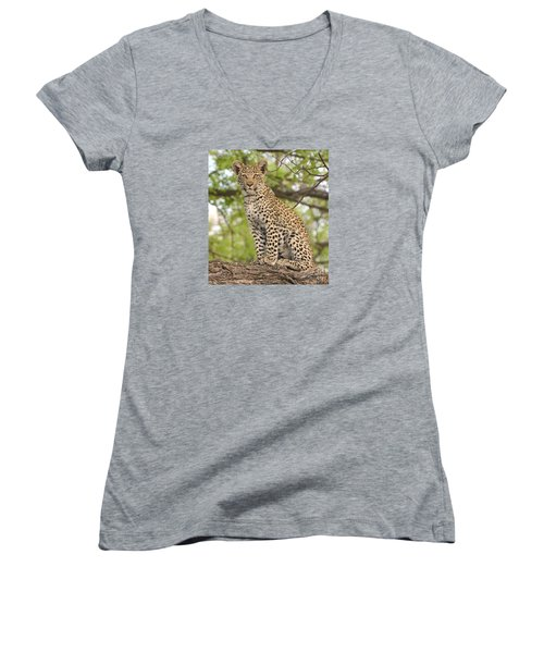 Leopard Cub Gaze Women's V-Neck T-Shirt