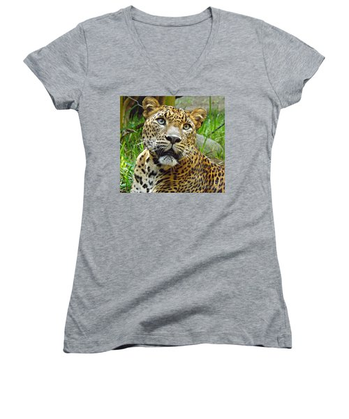 Leopard Face Women's V-Neck T-Shirt (Junior Cut) by Clare Bevan