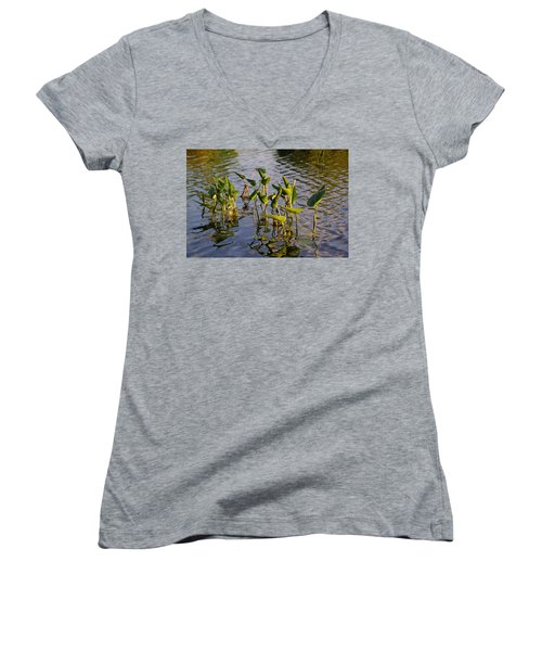 Lillies In Evening Glory Women's V-Neck (Athletic Fit)
