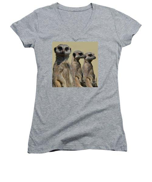 Line Dancing Meerkats Women's V-Neck T-Shirt (Junior Cut) by Paul Davenport