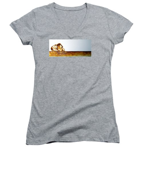 Lion And Lioness - Original Artwork Women's V-Neck T-Shirt