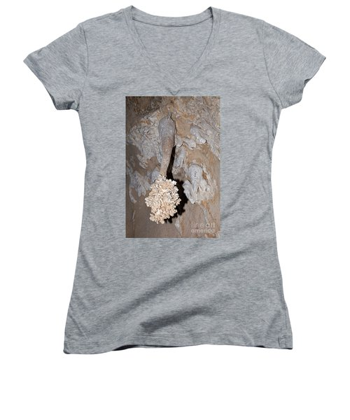 Lions Tail Carlsbad Caverns National Park Women's V-Neck