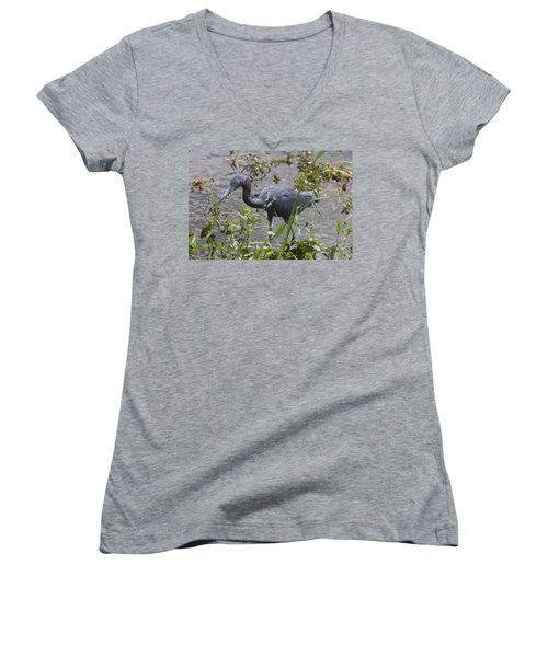 Women's V-Neck T-Shirt (Junior Cut) featuring the photograph Little Blue Heron - Waiting For Prey by Christiane Schulze Art And Photography