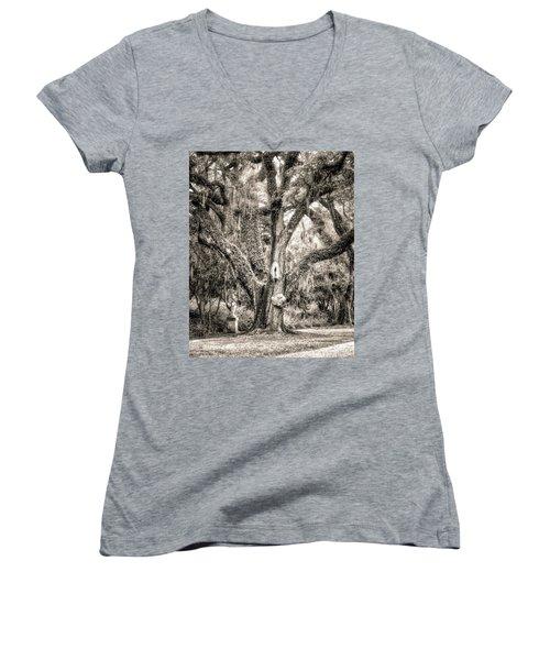 Little Surprises Women's V-Neck T-Shirt