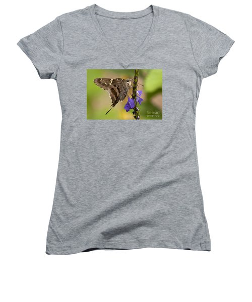 Women's V-Neck T-Shirt (Junior Cut) featuring the photograph Long-tailed Skipper Photo by Meg Rousher