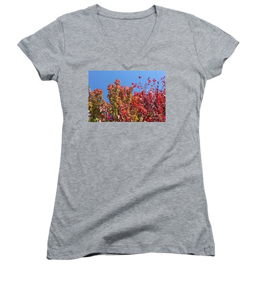 Women's V-Neck T-Shirt (Junior Cut) featuring the photograph Looking Upward by Debbie Hart