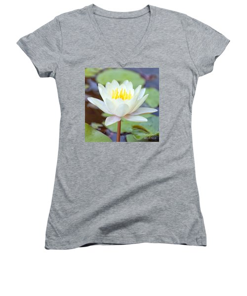 Lotus Flower 02 Women's V-Neck T-Shirt (Junior Cut) by Antony McAulay