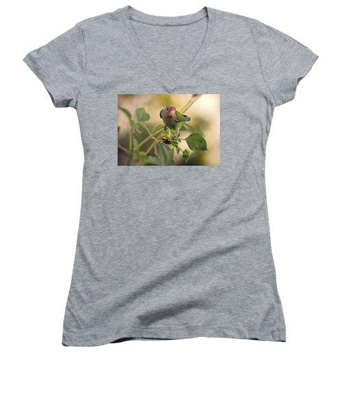Lovebird On  Sunflower Branch  Women's V-Neck T-Shirt (Junior Cut) by Saija  Lehtonen