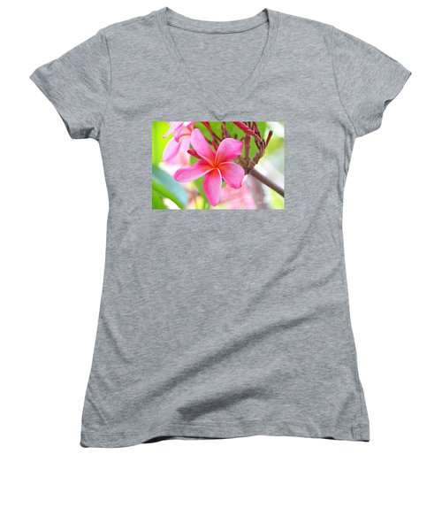 Women's V-Neck T-Shirt (Junior Cut) featuring the photograph Lovely Plumeria by David Lawson