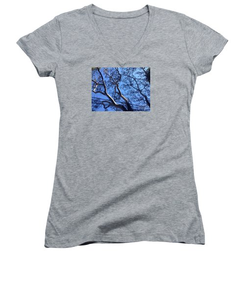 Women's V-Neck T-Shirt (Junior Cut) featuring the photograph Magnificence by Nora Boghossian