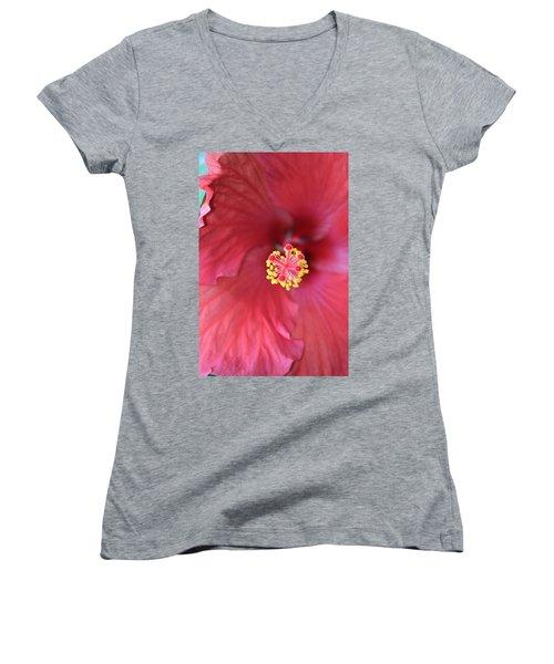 Magnolia 5  Women's V-Neck T-Shirt