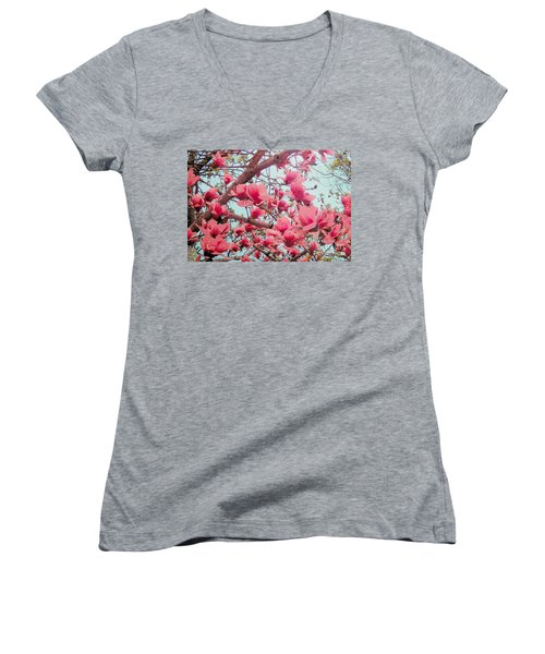 Magnolia Blossoms In Spring Women's V-Neck T-Shirt (Junior Cut) by Janette Boyd