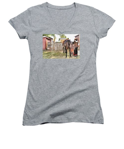 Mahaffie Stagecoach Stop And Farm Women's V-Neck T-Shirt (Junior Cut) by Liane Wright