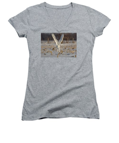 Majestic Snowy Women's V-Neck T-Shirt