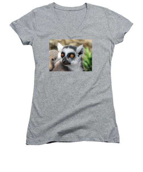 Women's V-Neck T-Shirt (Junior Cut) featuring the photograph Malagasy Lemur by Sergey Lukashin
